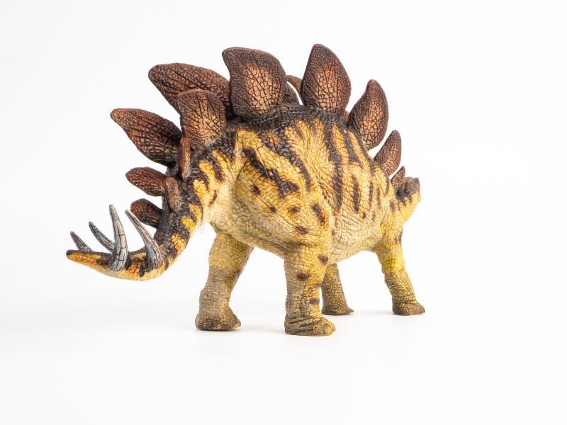 Dinossauro do Stegosaurus no fundo branco imagens de stock royalty free