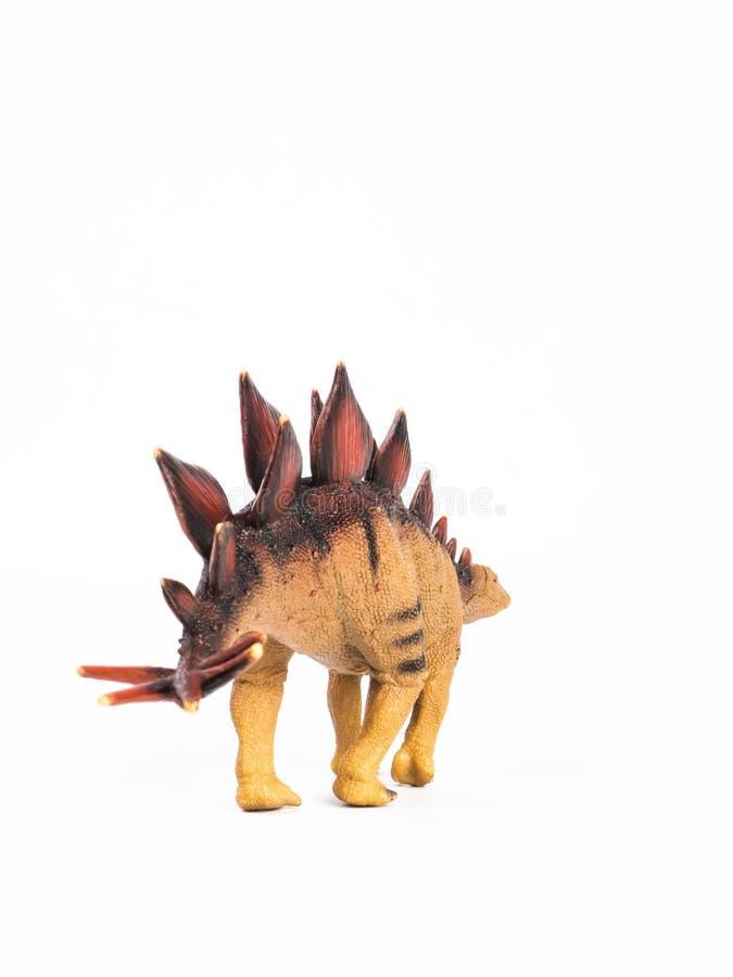 Dinossauro do Stegosaurus no fundo branco imagens de stock