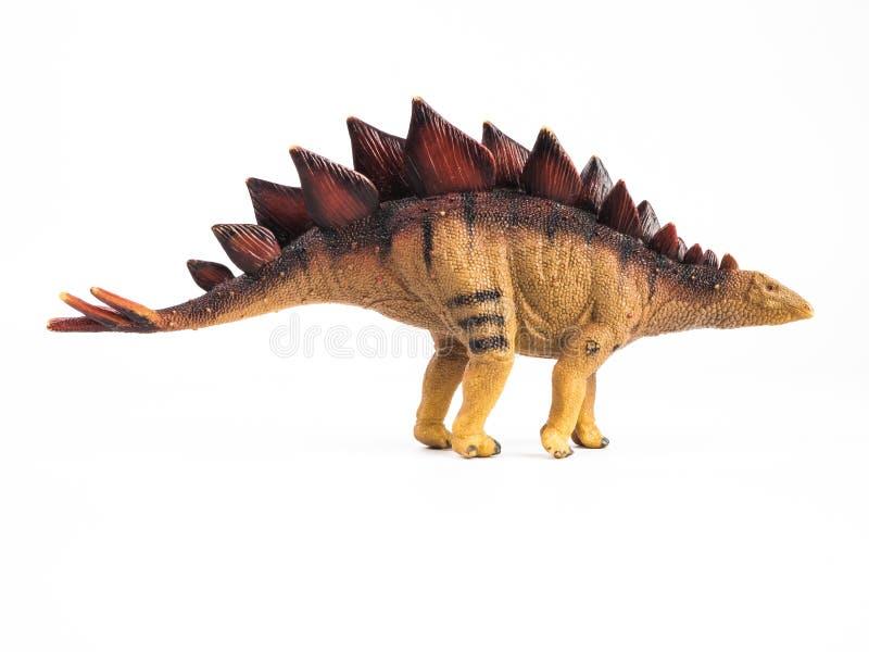 Dinossauro do Stegosaurus no fundo branco foto de stock royalty free