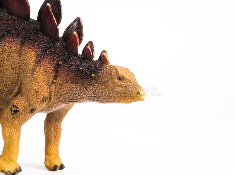 Dinossauro do Stegosaurus no fundo branco fotografia de stock royalty free