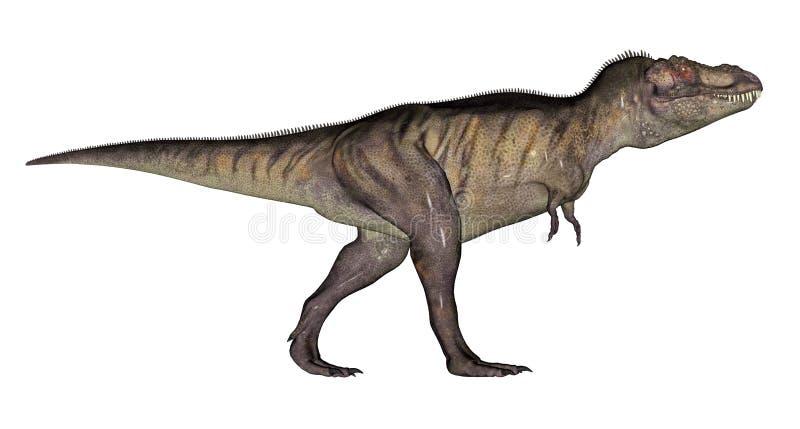 Dinossauro do tiranossauro ilustração stock