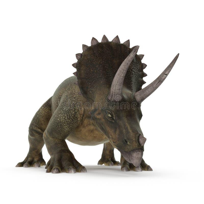 Dinossauro do Triceratops no branco ilustração 3D ilustração do vetor