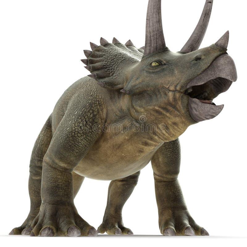 Dinossauro do Triceratops no branco ilustração 3D ilustração royalty free