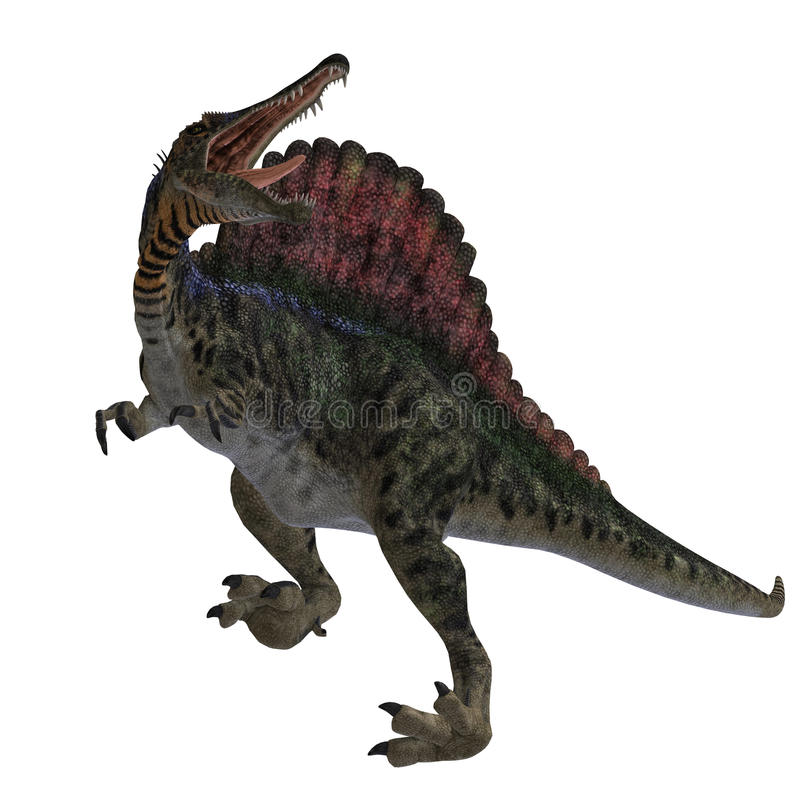 Dinossauro Spinosaurus ilustração royalty free