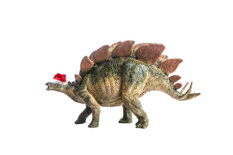 Dinossauro, Stegosaurus no fundo branco fotografia de stock royalty free