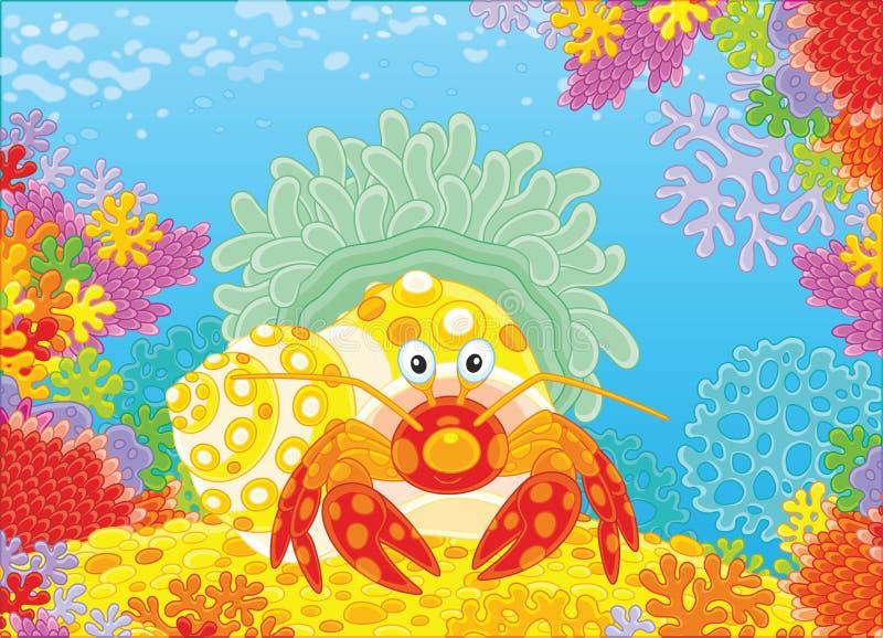 Diogenes-krabba med en actinia royaltyfri illustrationer