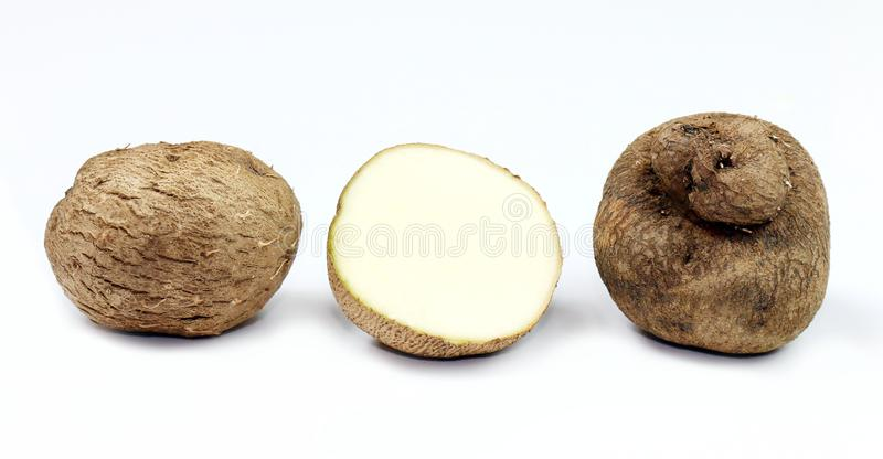 Dioscorea, mot thaïlandais de Mun-Neb, repli frais de dioscorea, lamelles de dioscorea s'enracinent d'isolement sur le fond blanc photographie stock libre de droits