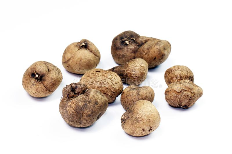 Dioscorea, Mun-Neb Thai word, Fresh Dioscorea tuck, Dioscorea slats root isolated on white background, Rubeola fotografie stock photography