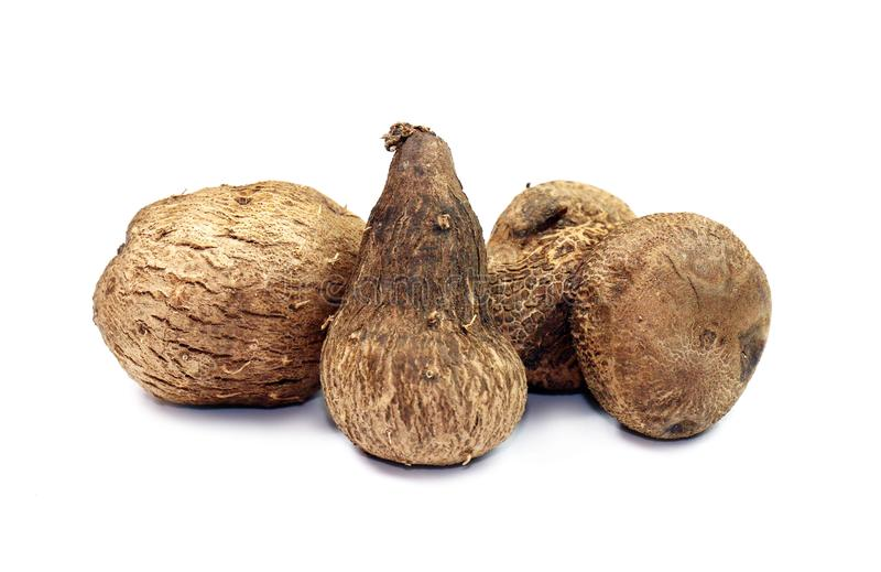 Dioscorea, Mun-Neb Thai word, Fresh Dioscorea tuck, Dioscorea slats root isolated on white background, Rubeola fotografie royalty free stock photography
