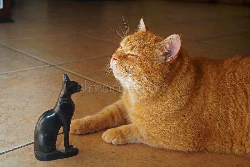 Dioses antiguos, gato en luz del sol con la estatua de la diosa Bastet foto de archivo libre de regalías