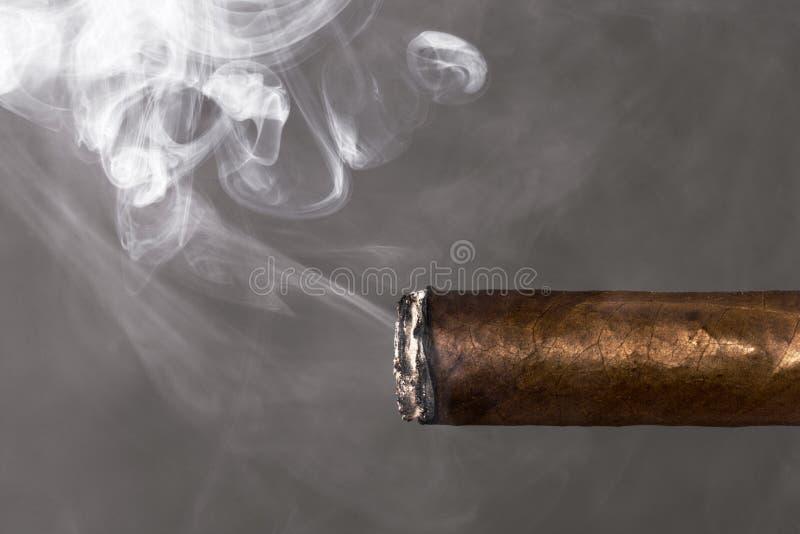 Dipendenza di nicotina di fumo del sigaro immagine stock