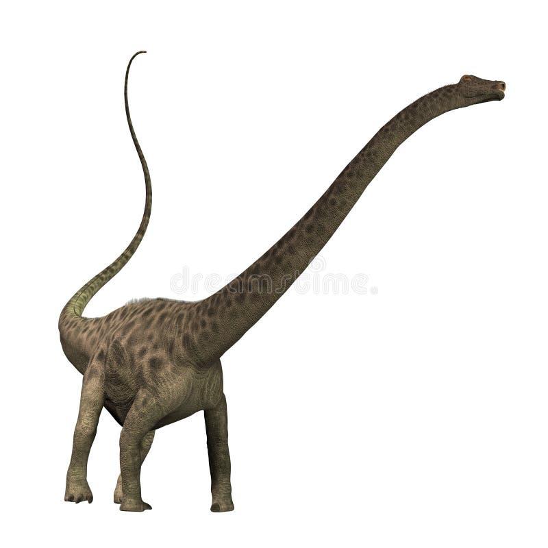 Diplodocus 01 royalty-vrije illustratie