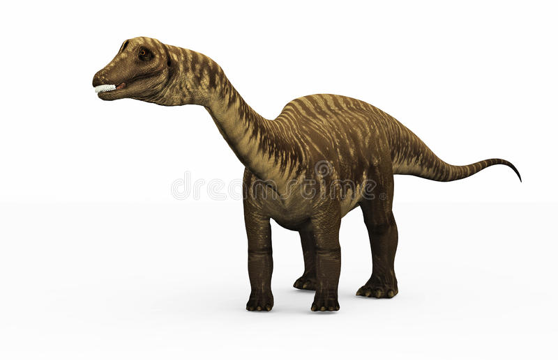 Download Diplodocus Dinosaur stock illustration. Image of dinosaur - 18677319