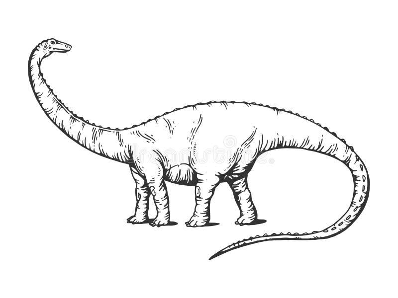Diplodocusdinosaurus die vectorillustratie graveren royalty-vrije illustratie