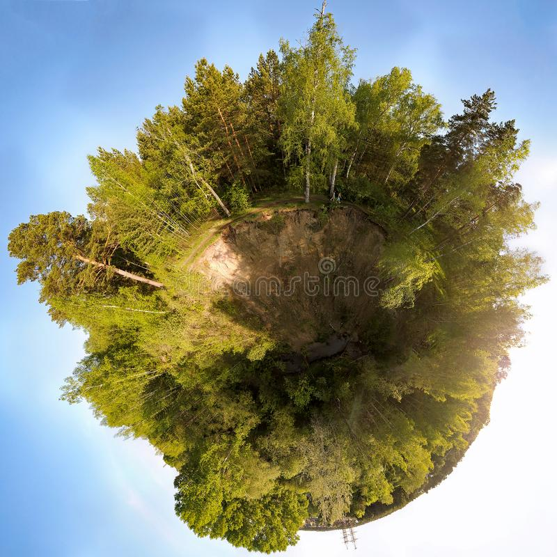 360 diplomas panorâmicos em uma floresta verde com um céu azul imagem de stock