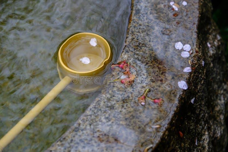 Dipper μπαμπού της πηγής νερού Tsukubai στον ιαπωνικό κήπο Kita-στο ναό, Kosenbamachi, Kawagoe, Σαϊτάμα, Ιαπωνία την άνοιξη Με το στοκ φωτογραφία