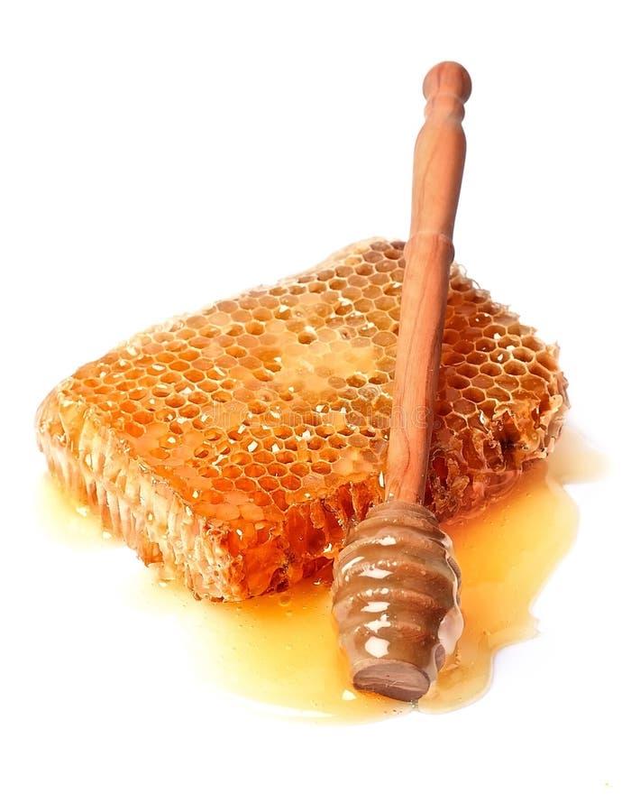 Dipper do mel com fim do favo de mel acima imagens de stock