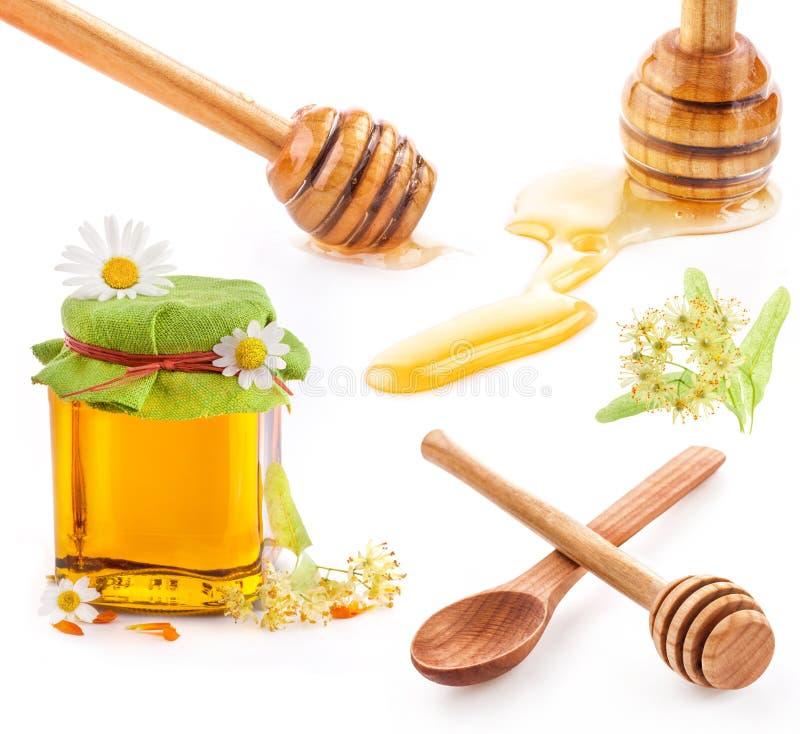 Dipper do mel e mel no frasco de vidro com flores fotografia de stock
