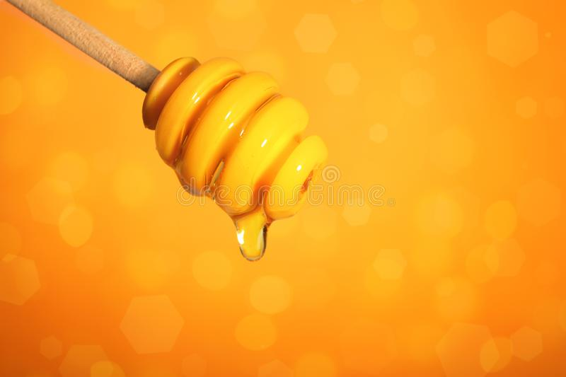 Dipper with dripping honey on color background, closeup. Space for text stock photos