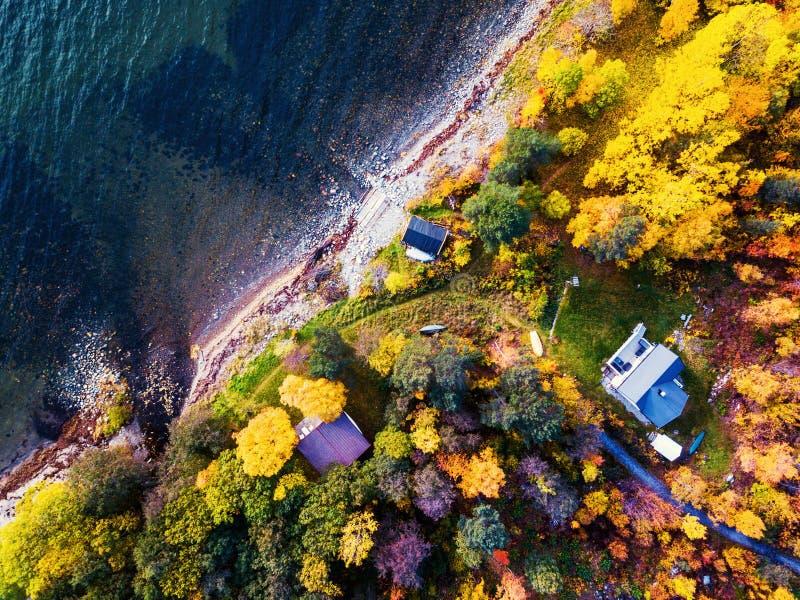 Directe benedenmening over het bos en de kustlijn in Molde, Noorwegen stock foto's