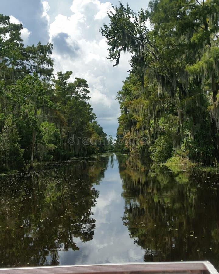 Directement par le bayou photos libres de droits