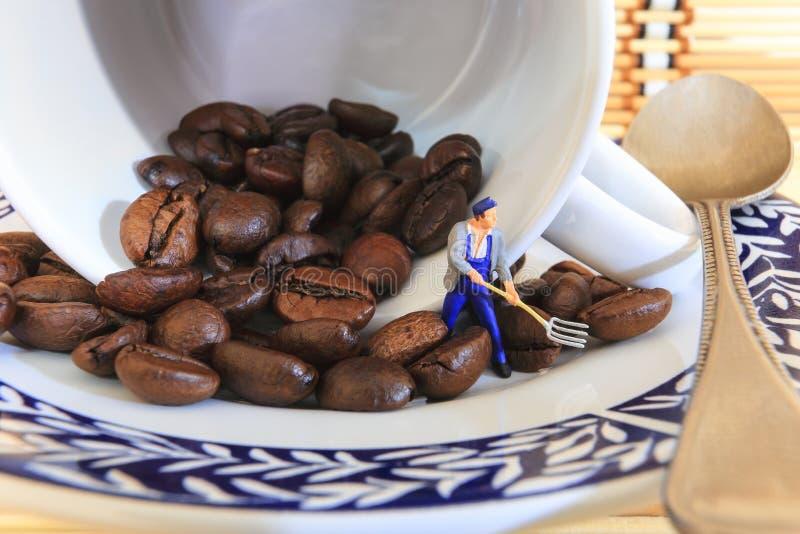 Directeur de grains de café images stock