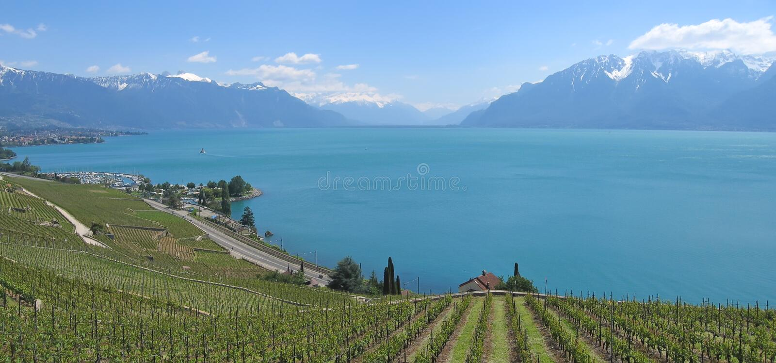 Download In Direction Of The Mount Pelerin , Leman Lake Stock Photo - Image: 2006234