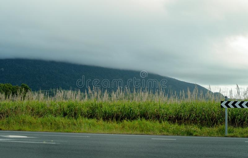 Directional Arrows On Highway Beside Sugar Cane Field. Directional arrow signs on side of highway in front of a field of sugar cane with mountains and cloudy sky stock photography