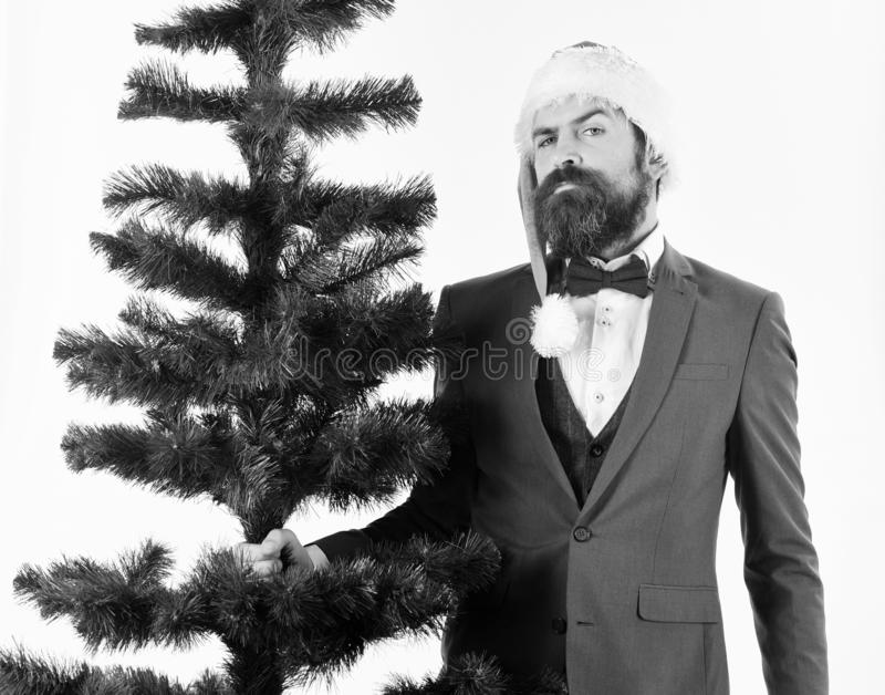 Director with beard gets ready for Christmas. Christmas corporate party. Concept. Businessman with proud face carries bald Christmas tree. Man in smart suit and stock photos