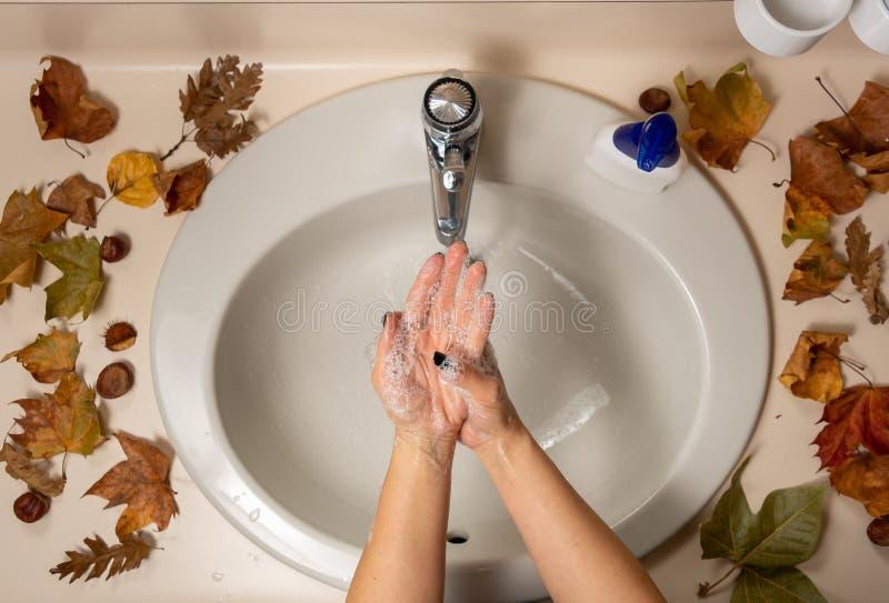 Diretamente acima do close-up com as mãos femininas debaixo de água fotos de stock royalty free