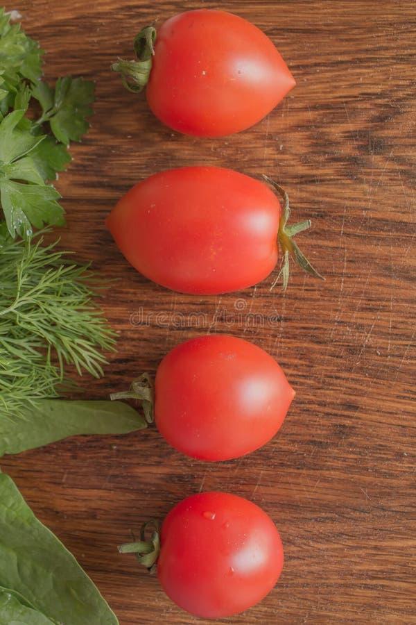 Direzione del pomodoro fotografie stock libere da diritti