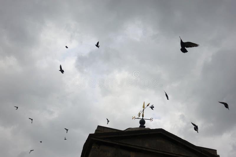 Direzione sul cielo fotografia stock libera da diritti
