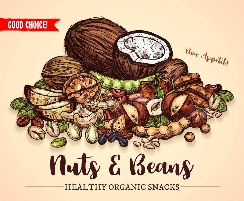 Dirigez l'affiche de croquis des graines d'écrous et de haricots de fruit illustration libre de droits