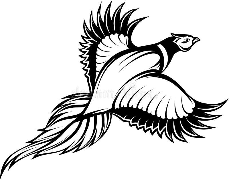 Dirigez l'illustration d'un faisan monochrome élégant de vol illustration de vecteur