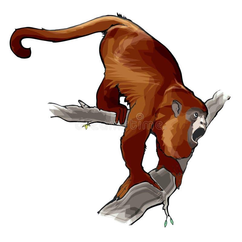 Dirigez l'illustration de l'Alouatta animal de ¡ de singe d'hurleur, de perroquet, d'araguato ou de carayÃ, hurlant sur un arbre images stock