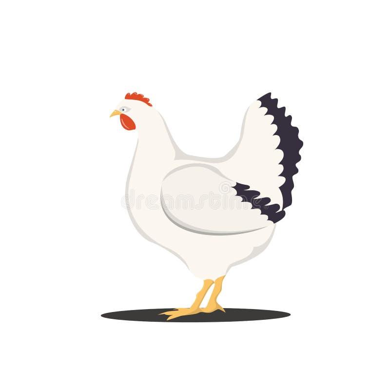 Dirigez l'illustration de la poule mignonne de bande dessinée d'isolement sur le fond blanc illustration stock