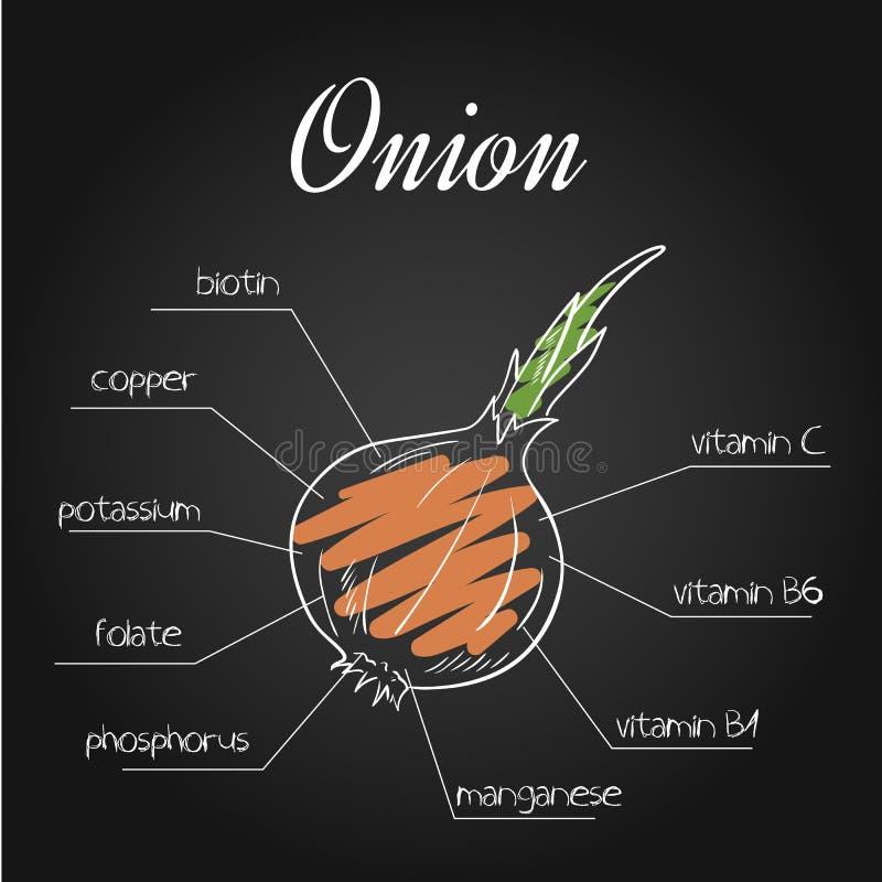 Dirigez l'illustration des éléments nutritifs énumèrent pour l'oignon sur le contexte de tableau illustration libre de droits