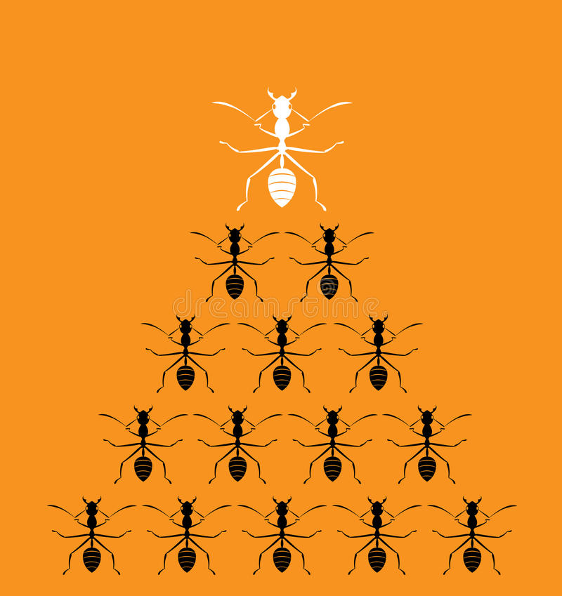 Dirigez l'image de l'des fourmis sur le fond orange illustration libre de droits