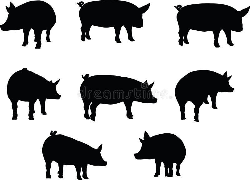 Dirigez l'image, silhouette de porc, en position debout, d'isolement sur le fond blanc illustration de vecteur
