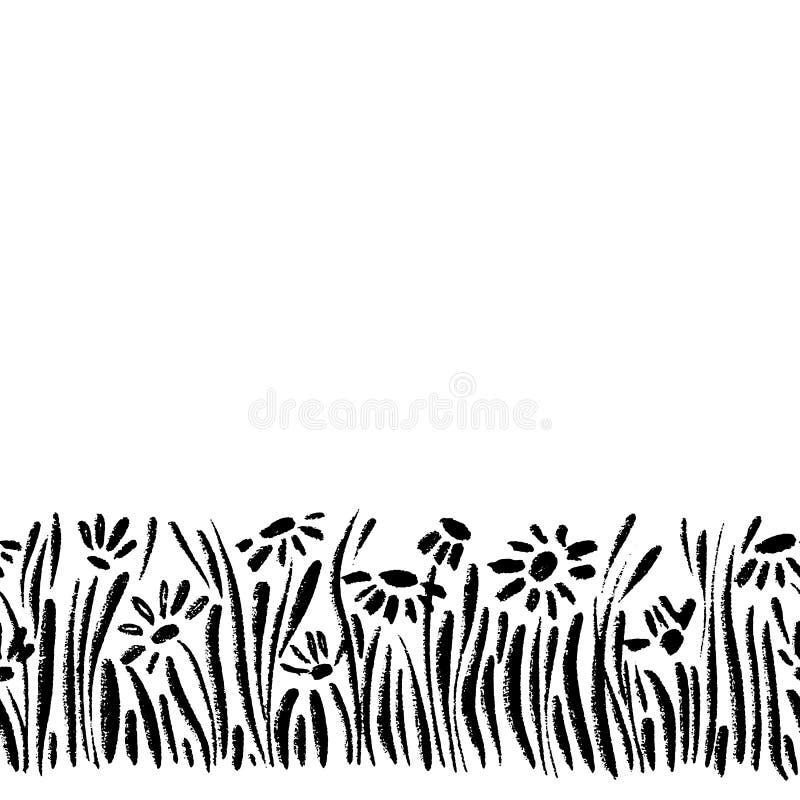 Dirigez la frontière sans couture avec des marguerites de dessin d'encre, des herbes et des fleurs, illustration botanique artist illustration de vecteur