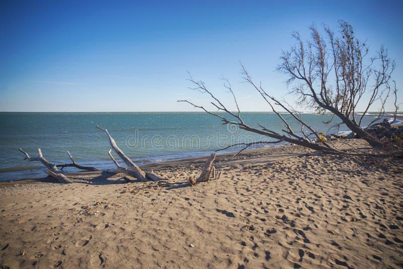 Dirigez la plage de parc national de Pelee en automne au temps de coucher du soleil, lac images libres de droits