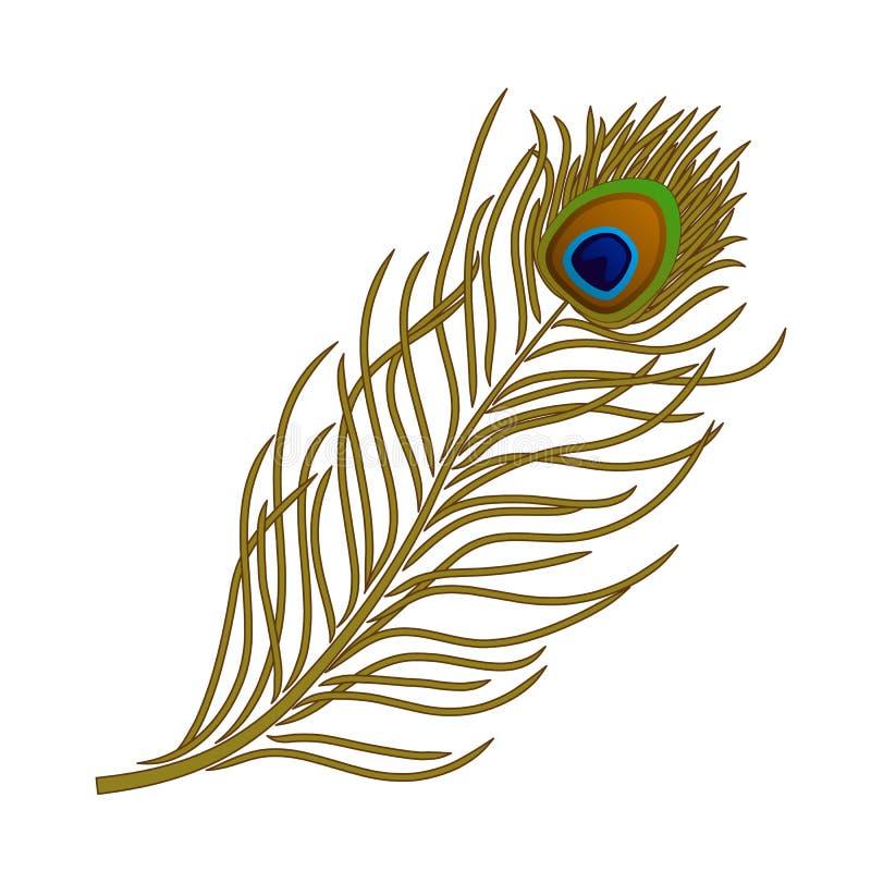Dirigez la plume de l'oiseau de paon sur le fond blanc illustration de vecteur