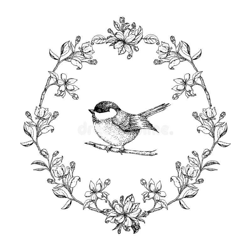 Dirigez le cadre rond de vintage avec des oiseaux et des fleurs de pomme Guirlande florale Rebecca 36 Ajustement pour la carte de illustration libre de droits