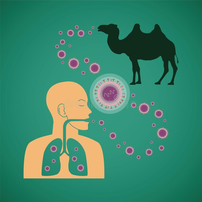 Dirigez le concept du virus pathogène respiratoire de l'homme et animal de MERS illustration stock