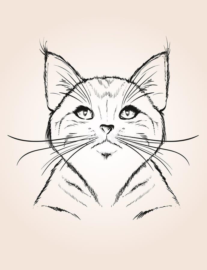 Dirigez le croquis d'un visage stylisé du ` s de chaton illustration libre de droits