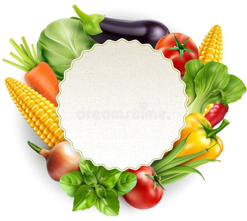 Dirigez le modèle de menu avec des carottes de légumes, chou, basilic, à illustration stock