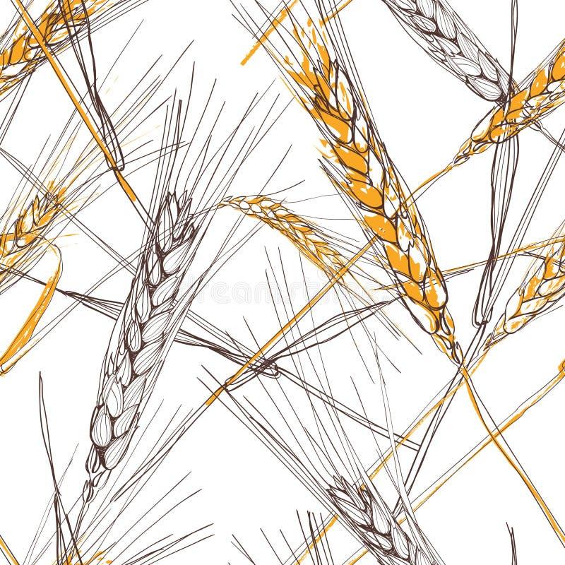Dirigez le modèle sans couture avec l'oreille tirée par la main du blé Illustration esquissée tirée par la main illustration stock