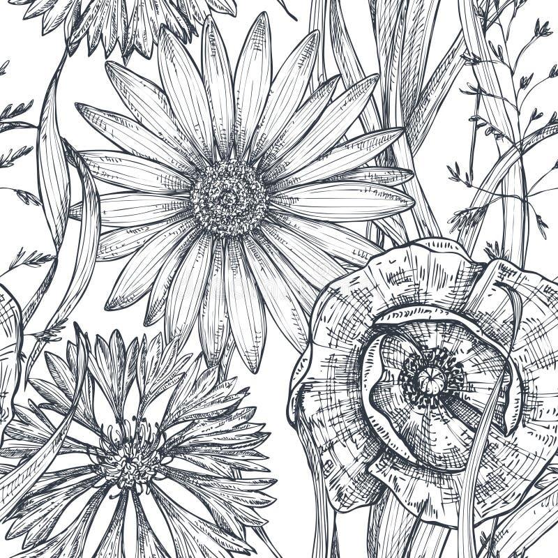 Dirigez le modèle sans couture avec le pavot tiré par la main et d'autres fleurs et plantes illustration de vecteur