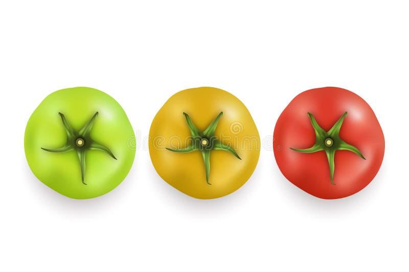 Dirigez le plan rapproché réglé réaliste d'icône verte 3d, jaune et rouge de tomate d'isolement sur le fond blanc Vue supérieure  illustration de vecteur