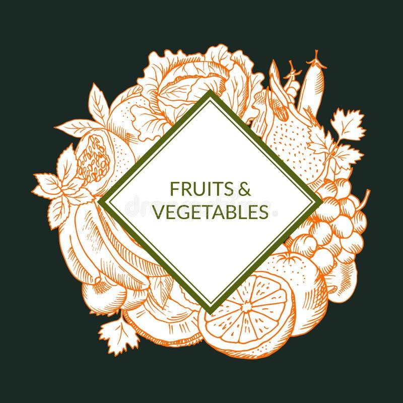 Dirigez le vegan de fruits et légumes esquissé par griffonnage, emblème sain de nourriture d'isolement sur le fond coloré illustration libre de droits
